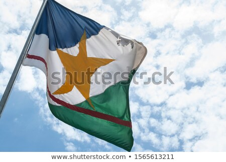 Flag of Roraima - Brasil Stock photo © joggi2002