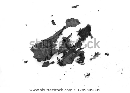 Paper ash Stock photo © smuay