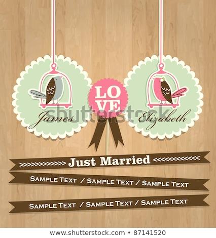 Coprire wedding album ragazza amore bellezza Foto d'archivio © leonido
