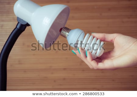 compact fluorescent bulb Stock photo © PixelsAway