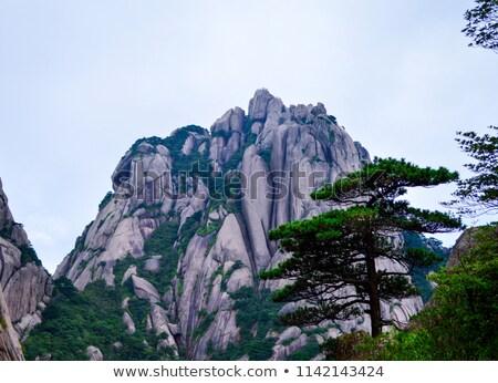 Chinese mountains and stone pathway Stock photo © Juhku