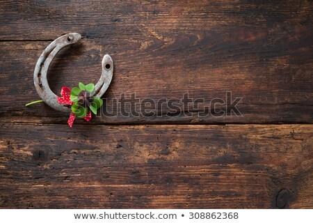 Green shamrock clovers on wooden background Stock photo © vlad_star