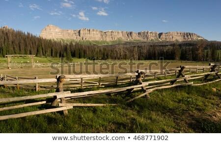 Brooks Lake Breccia Cliffs Mountain Range Shoshone National Fore Stock photo © cboswell