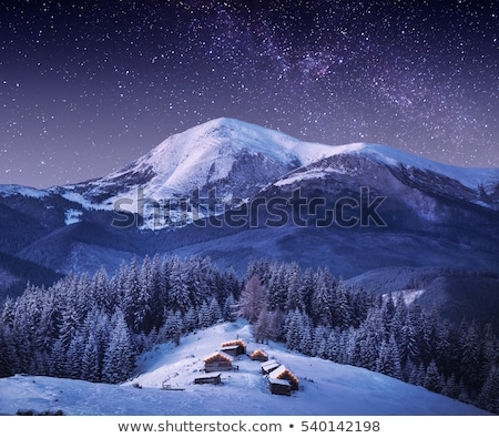 House of snow in mountains at night Stock photo © Kotenko