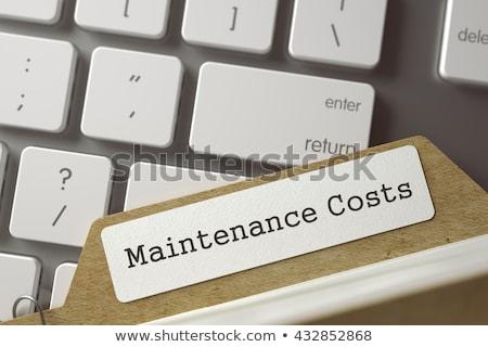 Kártya karbantartás költségvetés 3D renderelt kép kék Stock fotó © tashatuvango