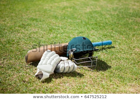 Vista cricket bate casco campo Foto stock © wavebreak_media