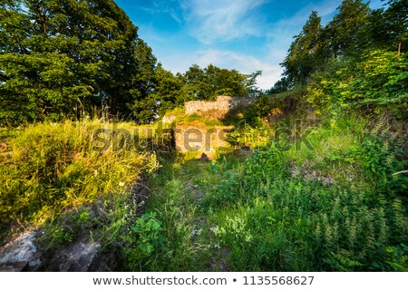 castle ruins on rogowiec stock photo © hochwander