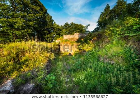 замок руин природы пейзаж красоту лет Сток-фото © Hochwander
