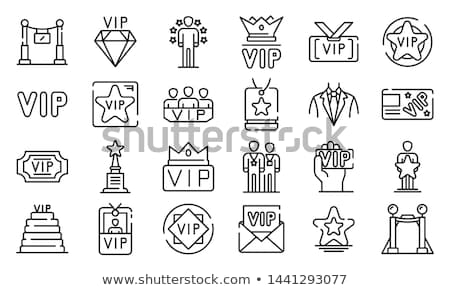 vip icon stock photo © oakozhan
