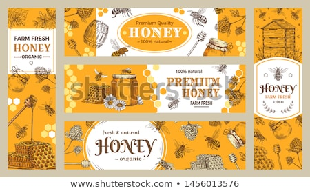 Sticker design with bees and beehive Stock photo © bluering