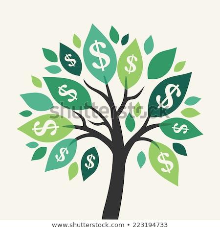 3D · árbol · dólares · resumen · diseno · cuadro - foto stock © monarx3d