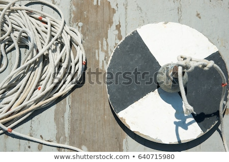 secchi disk with rope on a wooden dock stock photo © mps197