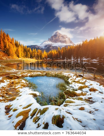 landscape the wild nature lake Misurina  Stock photo © OleksandrO