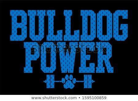 bulldog sports mascot stock photo © krisdog