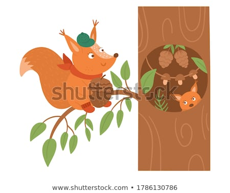Icon of squirrel with cone isolated, forest, woodland animal Stock photo © MarySan
