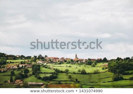 Burgundy panorama Stock photo © Hofmeester
