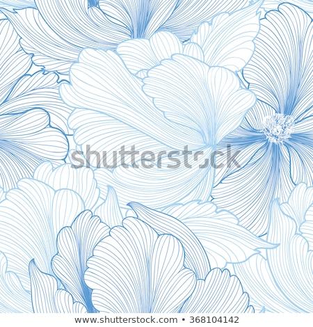 Floral Gliederung Blumen Vektor Muster Stock foto © Margolana