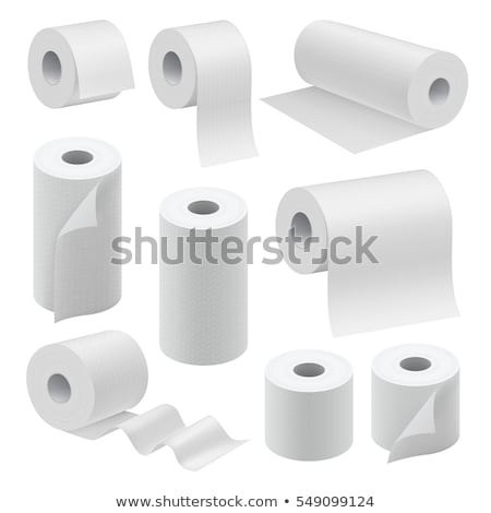 papír · szalag · zsemle · szett · vektor · fürdőszoba - stock fotó © marysan