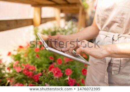 Jovem feminino jardineiro avental digital comprimido Foto stock © pressmaster