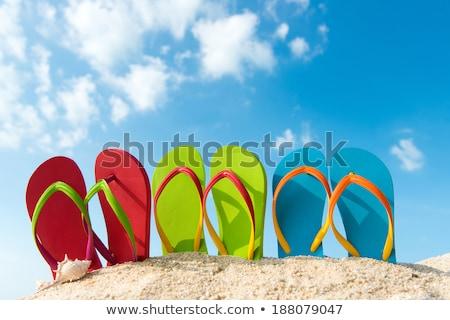 Yaz eğlence yaz tatil vektör Stok fotoğraf © robuart