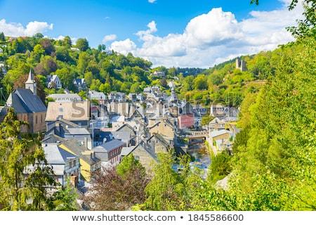 historic houses in Monschau, Germany Stock photo © borisb17