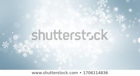 Srebrny płatki śniegu czarny christmas nowy rok Zdjęcia stock © olehsvetiukha