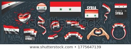 Vector ingesteld vlag Syrië creatieve Stockfoto © butenkow