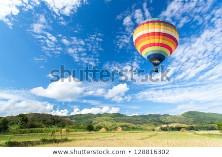 Blue Background with Green Tree and Hot Air Balloons stock photo © WaD