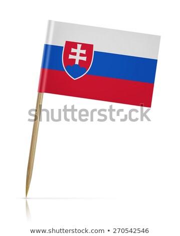 Minyatür bayrak Slovakya yalıtılmış toplantı Stok fotoğraf © bosphorus