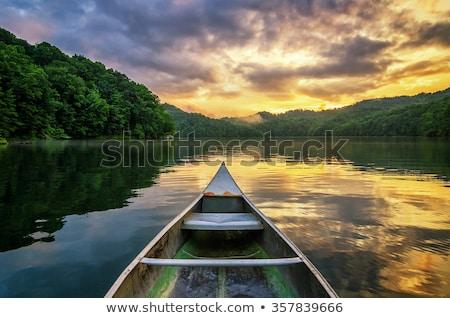 Quiet Creek in the Mountains Stock photo © wildnerdpix