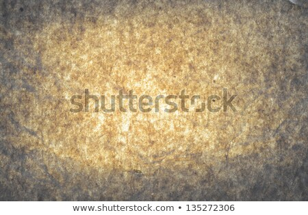 Seamless Tileable Texture of Old Paper Surface. Stock photo © tashatuvango