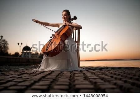 Oynama viyolonsel fotoğraf tanınmaz kadın müzisyen Stok fotoğraf © sumners