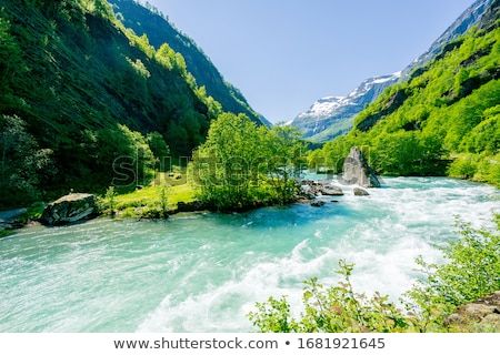 Beautiful view of mountain river in summer. Stock photo © papa1266
