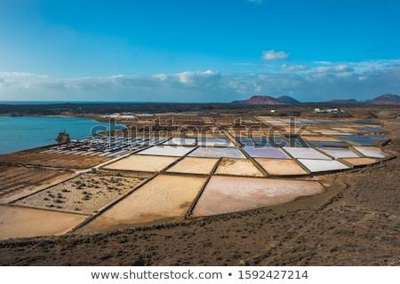patroon · veld · zout · raffinaderij · oceaan · meer - stockfoto © meinzahn