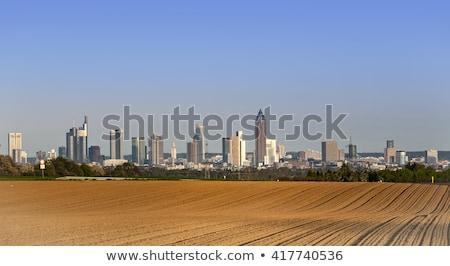 Sikátor mezők sziluett Frankfurt égbolt fa Stock fotó © meinzahn