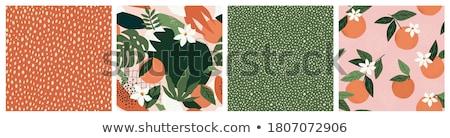 Laranjas abstrato verde branco Foto stock © boroda