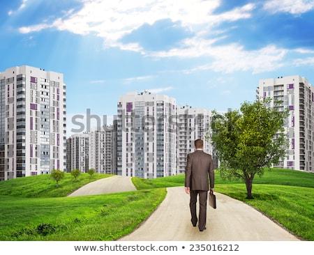 бизнесмен дороги вид сзади зданий травой поле небе Сток-фото © cherezoff