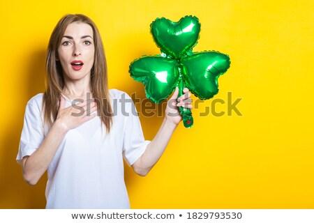 Shamrock levél vektor fehér természet zöld Stock fotó © dip