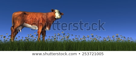 hereford cow   3d render stock photo © elenarts