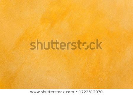 építészeti narancs új terv iroda ház Stock fotó © ylivdesign