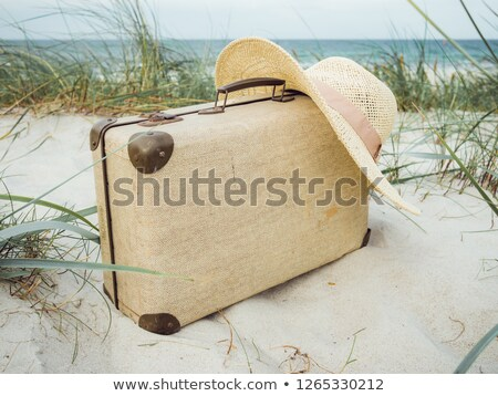 old vintgae suitcase in the dunes Stock photo © compuinfoto