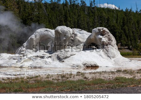 White Dome Geyser erupts on Summer day in Yellowstone Stock photo © emattil