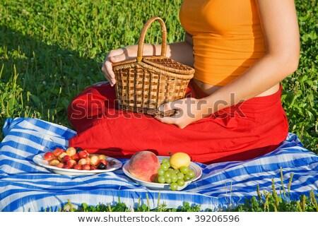стороны корзины поляна девушки весны Сток-фото © Paha_L