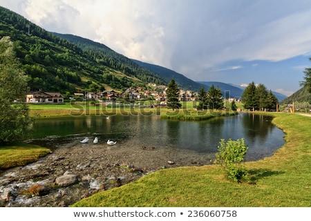 small lake in vermiglio stock photo © antonio-s
