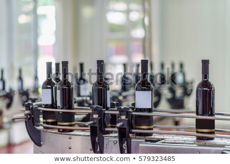 wine bottles on the conveyor Stock photo © OleksandrO