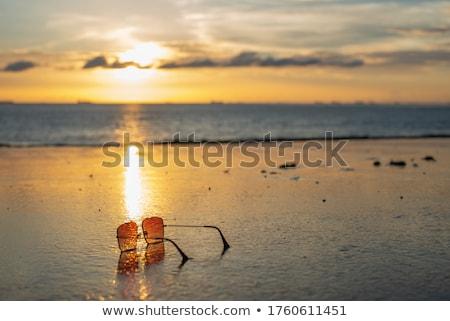 Zonnebril zee bruin oog zon ontwerp Stockfoto © ankarb