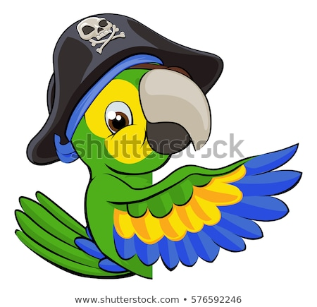 Peeking Cartoon Pirate Parrot Stock photo © Krisdog