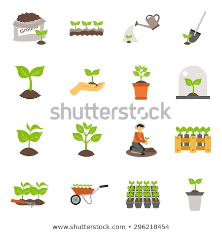 Sow Seeds Flat Icon Stock photo © ahasoft
