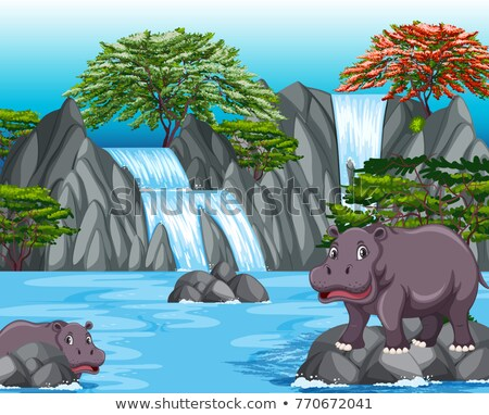 Two hippos at the waterfall scene Stock photo © bluering