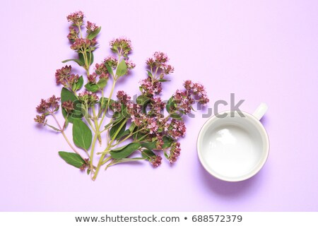 Cup of tea and branches of spring flowers bouquet blooming lilac Stock photo © Illia